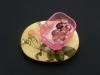 47_thunbergia-grandiflora.jpg